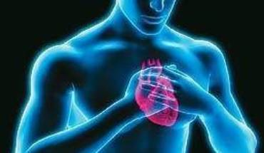 Cardiofobia
